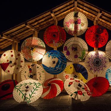 ความหลากหลายของร่ม